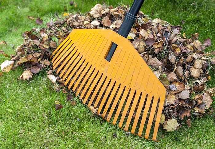 Garden Cleanups Brisbane - Circle Maintenance