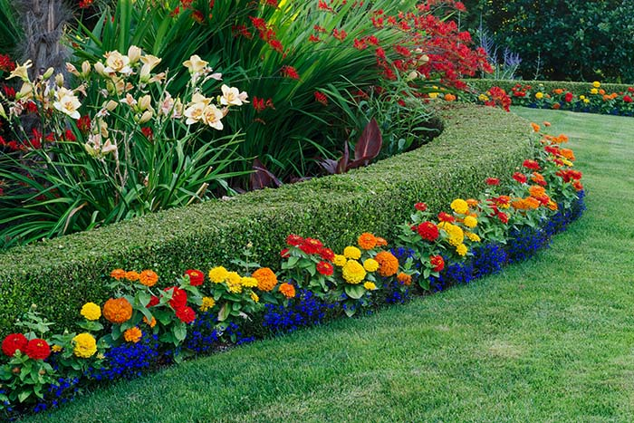 Soft Landscaping Brisbane - Circle Maintenance