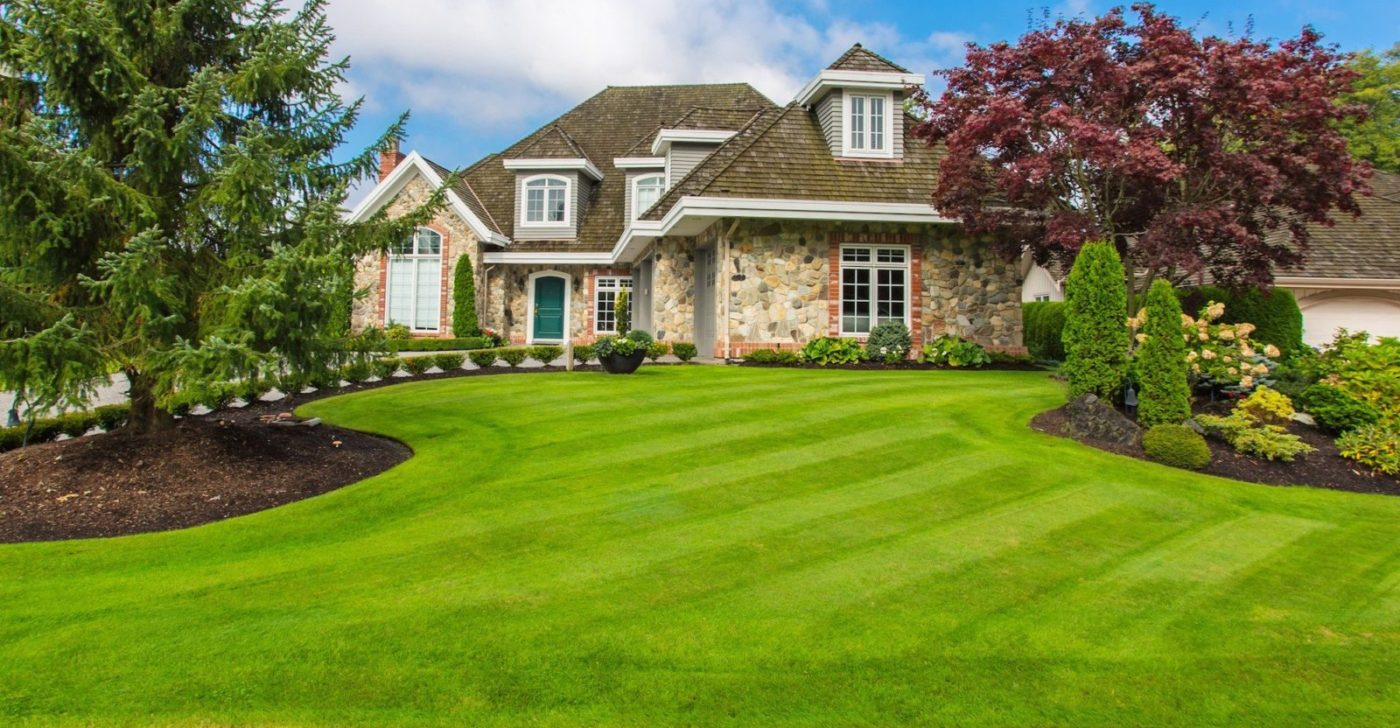 Cut Lawn - Circle Maintenance Brisbane
