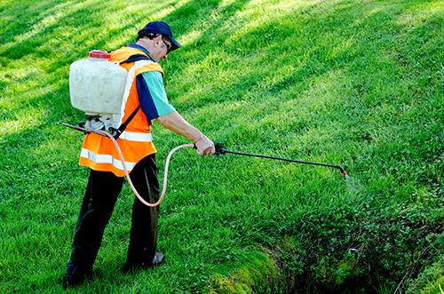 lawn mowing west brisbane