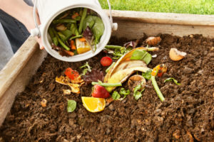 garden clean up brisbane